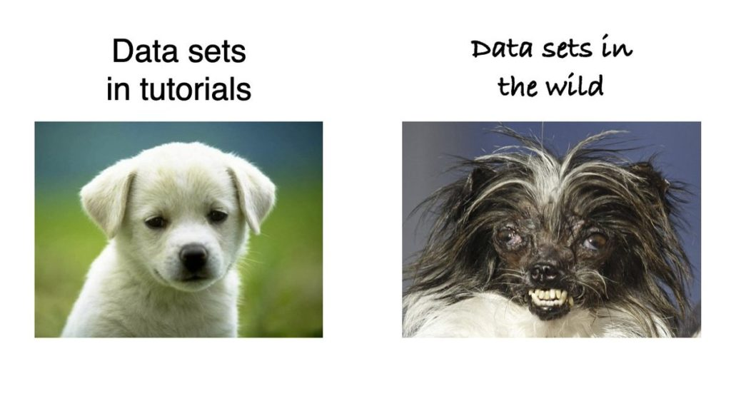 Data sets in tutorials are always cute, data sets in the wild are monstrous